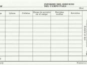 Informe del servicio delcampo